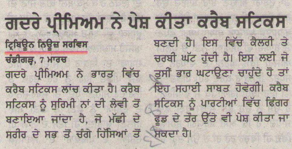 punjabi-tribune-page-8-08-03-2016